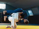 Karate, Judo, Silat